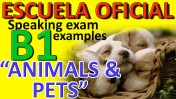 Exámenes Escuela Oficial de Idiomas EOI 2010 pets